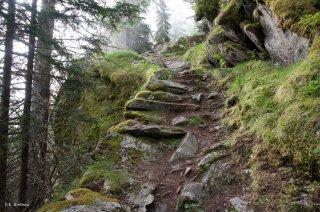 Sentier montant au Vallon de la Lavey à Saint-Christophe-en-Oisans