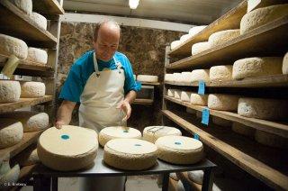 Travail dans la cave à fromages de Bleu du Vercors Sassenage. Ferme de Roche Rousse à Saint Martin en Vercors