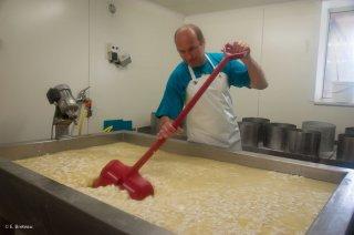 Brassage du caillé, fabrication du fromage Bleu du Vercors Sassenage. Ferme de Roche Rousse à Saint Martin en Vercors