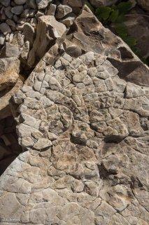 Roche calcaire de l'Obiou