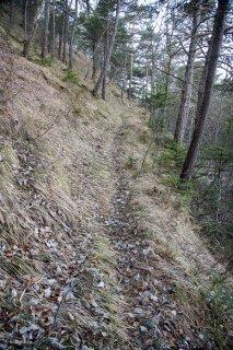 Sentier du Châtel. Forêt du Trièves, Isère