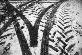 Empreintes de roues de tracteur sur une piste forestière. Trièves, Isère