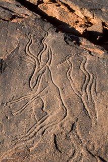 Gravure rupestre. Représentation d'antilopes