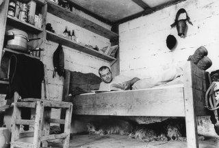 Pascal, berger au col d'Allos. Avec ses chiens ils se reposent aux heures chaudes