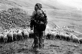 Pascal, berger au col d'Allos, sous l'orage de grêle