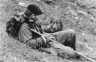 Pascal, berger au col d'Allos avec son chien Bouboule, compagnon de vie et de travail