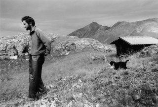 Mathieu, berger dans le Champsaur. Hautes-Alpes
