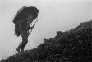 Alain, berger dans le Valgaudemar cherche ses brebis dans le brouillard