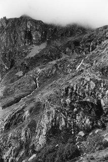 Alpage du Valgaudemar, les brebis passent en file indienne sur une vire escarpée. Hautes-Alpes