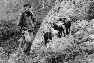 Mathieu et ses chiens, berger dans le Valgaudemar. Hautes-Alpes