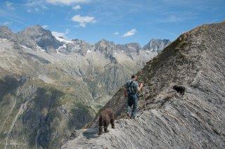 Alain, berger dans le Valgaudemar. Hautes-Alpes