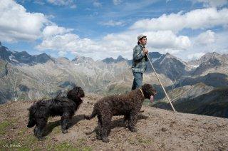 Alain, berger dans le Valgaudemar avec sa chienne Berger de Crau