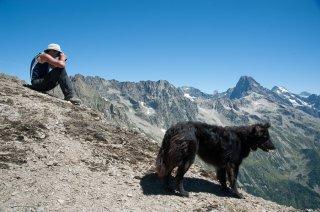 Henri, éleveur du Valgaudemar et son chien ont repéré des brebis égarées. Hautes-Alpes