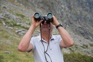 Jeannot cherche ses brebis en alpage. Champsaur, Hautes-Alpes