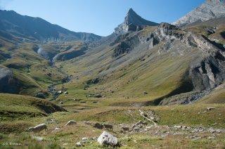 Alpage du Champsaur. Hautes-Alpes