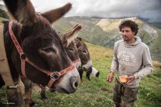 Tony, berger sur l'alpage de Méailles dans les Alpes de Haute Provence