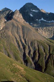 Alpage du Valgaudemar. Hautes-Alpes