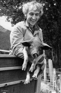 Eric, éleveur de porc bio à Chichilianne. Juin 2013