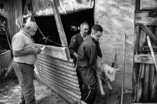 Eric et Quentin, bouchers à Mens se servent dans les fermes du canton. Août 2016