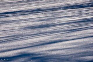 Neige sur les hauts-plateaux du Vercors