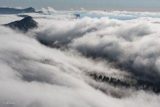 La mer de nuages tombe sur la forêt sous le Pas de Chattons. Réserve naturelle des hauts plateaux du Vercors. Isère