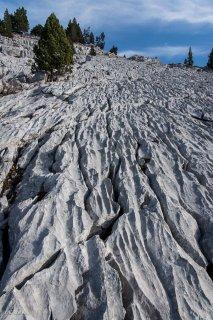 Lapiaz (érosion du calcaire) sur les hauts plateaux du Vercors. Isère