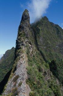 Ile Robinson Crusoé. Arête d'accès pour l'ascension au sommet du mont Yunque