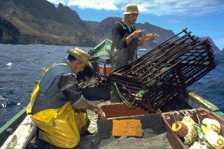 Ile Robinson Crusoé. Antonio et Popito, pêcheurs de langoustes. Les langoustes doivent faire une cote minimale, les petites sont rejetées à la mer