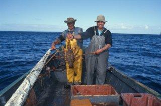 Ile Robinson Crusoé. Antonio et Popito, pêcheurs de langoustes. Une prise exceptionnelle de 7 kg