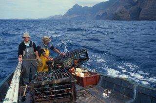 Ile Robinson Crusoé. Antonio et Popito pêcheurs de langoustes. Déplacement des casiers
