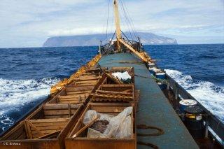 Arrivée du cargo El Navarino sur l'île de Selkirk. Une fois tous les mois ou tous les deux mois, le bateau amène les victuailles aux pêcheurs, il repartira chargé de langoustes en viviers