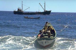 Ile Alexander Selkirk. Les barques font les allers retours entre le Cargo qui amène des victuailles pour les pêcheurs et repartira avec les langoustes pêchées depuis 1 mois ou deux