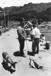 Ile Robinson Crusoé. Retour de pêche