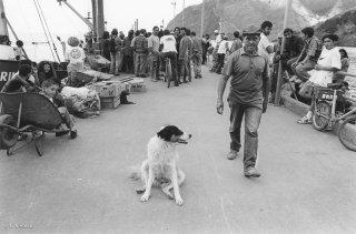 Ile Robinson Crusoé. Le village se transforme en fourmilière le jour de l'arrivée du Navarino, cargo qui amène chaque mois le ravitaillement depuis Valparaiso.