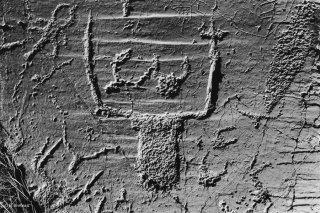 Vallée des Merveilles. Gravure rupestre. Corniformes