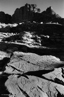 Vallée des Merveilles. Gravures de corniformes, de poignards et de réticulés