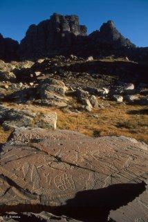 Sur cette dalle, les principales figures de gravures rupestres de la Vallée des Merveilles sont représentées : Poignards, réticulés et corniformes.