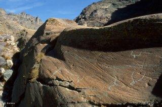 Vallée des Merveilles. Représentations de Corniformes et d'une hallebarde
