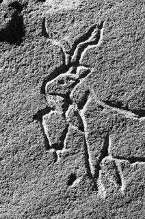 Gravure d'un bouc avec une sonnaille, autour d'une cabane de berger dans le massif des Ecrins