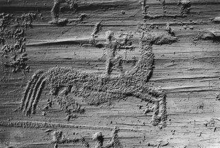 Parc national de Naquane. Un cavalier brandit une épée debout sur un cheval