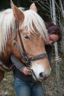 Association Equipage. Valérie Colin prépare son cheval pour le débardage