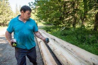 Patrick Freynet, bûcheron et scieur, mesure le cubage des troncs qu'il a abattu et écorcé. Lavaldens, Isère