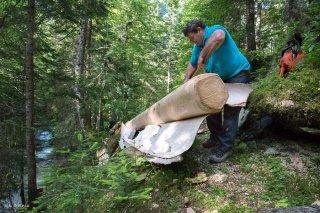 Patrick Freynet, bûcheron et scieur écorce ses arbres après abattage. Lavaldens, Isère