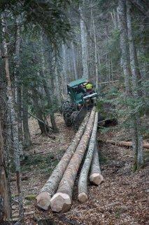 Eric Messa tire les grumes avec son tracteur débardeur. Chantier à Châtel en Trièves, Isère