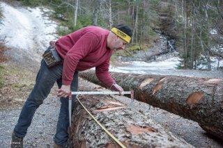 Eric Messa, bûcheron et débardeur, mesure le cubage d'une grume. Chantier à Châtel en Trièves