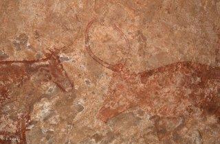 Peinture rupestre dans un abri sous roche, représentation de bovins