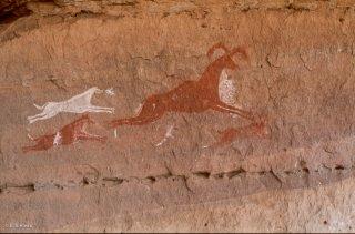 Peinture rupestre dans un abri sous roche, un animal est pousuivi par des chiens