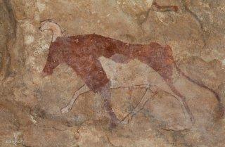 Peinture rupestre dans un abri sous roche, représentation d'un bovidé
