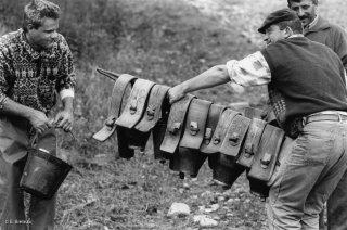 Fin de la transhumance, les bergers ôtent les plus grosses sonnailles. Alpes de Haute Provence