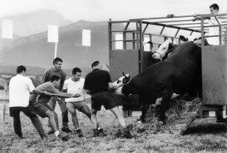 Comice agricole à Prébois